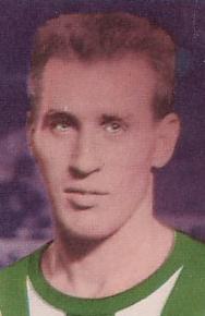 Senekowitsch